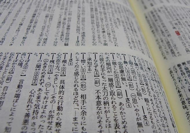 面白い 国語 辞典 新 明解
